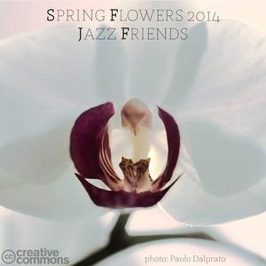 Spring Flowers 2014