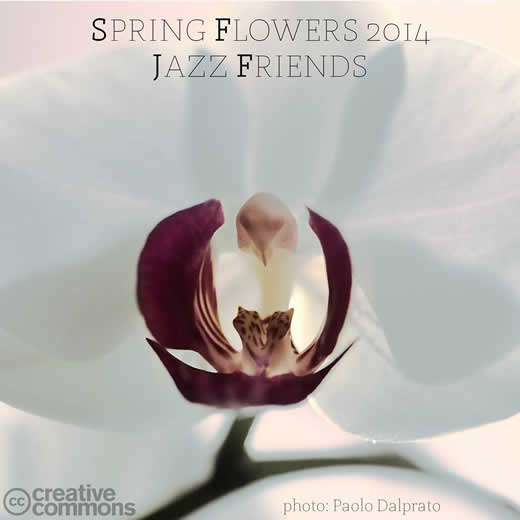 Jazz Friends - Spring Flowers
